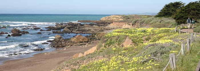Where to stay in Cambria, CA off CA Highway 1